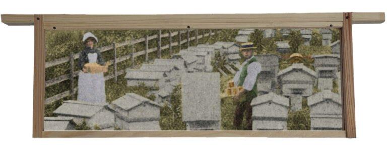 William Woodley Of Beedon 1893 Back of Garden Cottage Beedon