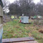beehive yourself apiary 125 x 125