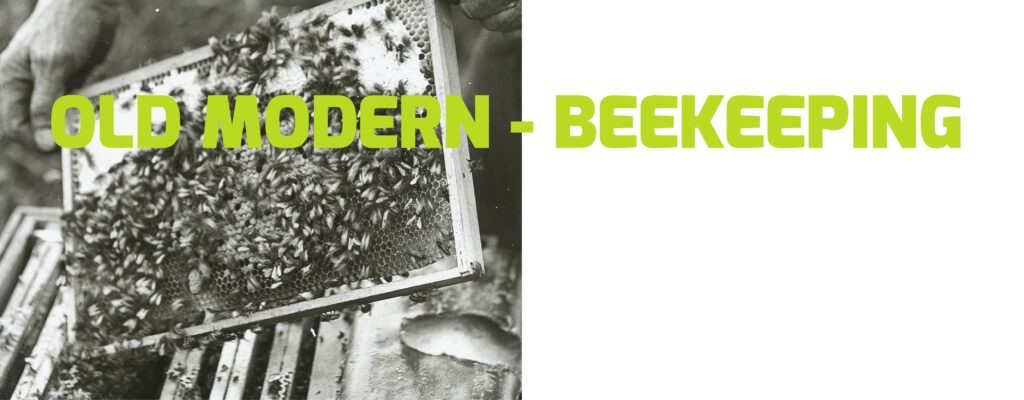 Old Modern Beekeeping Without Link at the Beehive Yourself website.