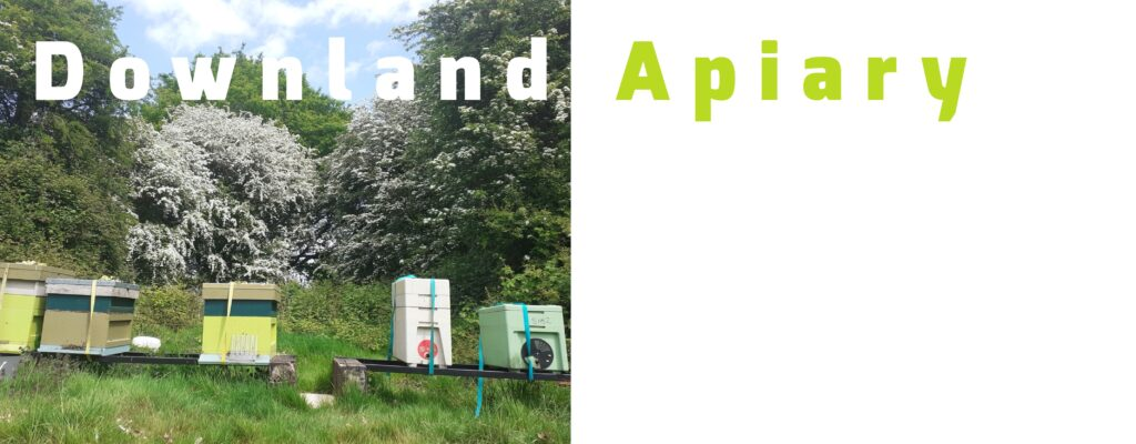 Downland Apiary Beehive Yourself